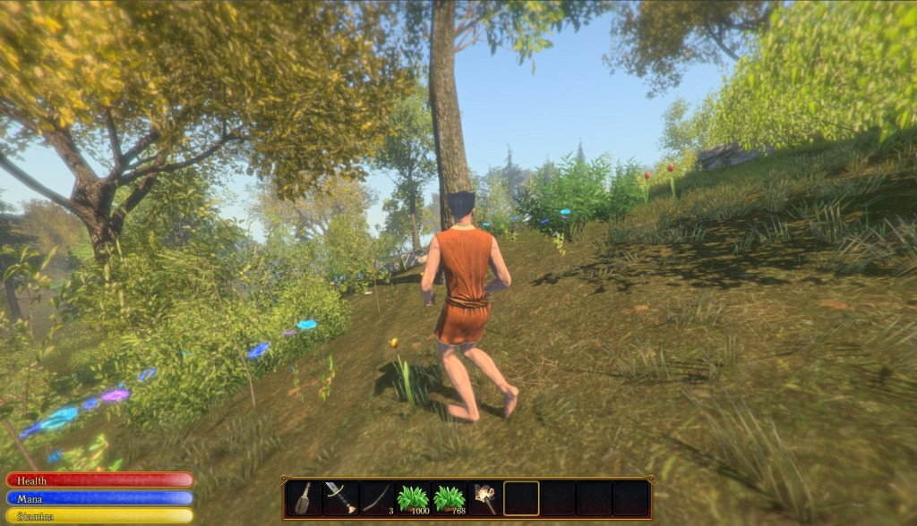 Forest Realm Explorer