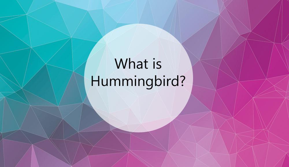 what-is-Hummingbird